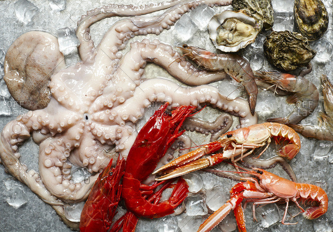 Platter of raw seafood