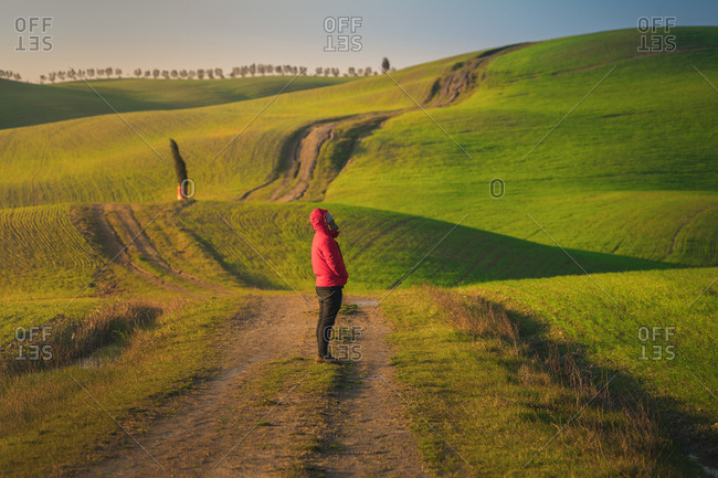 Back view of man in jacket walking on empty rural road in majestic green fields of Italy