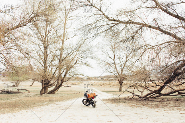 motorcycle located on narrow countryside road in dry field during trip in nature