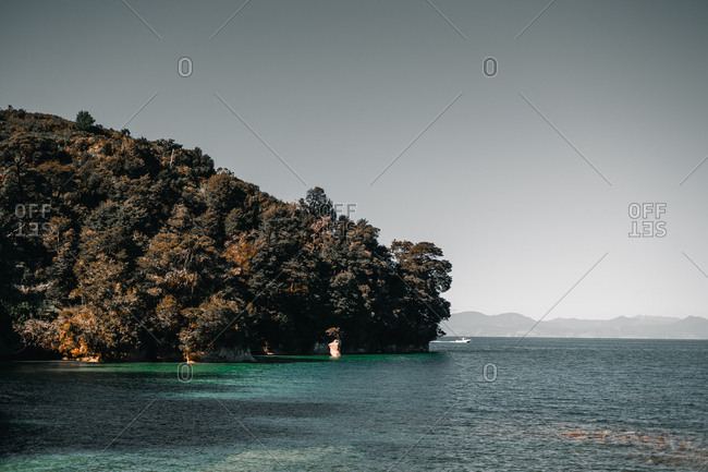Beautiful view of green trees and seashore on background of blue sea.