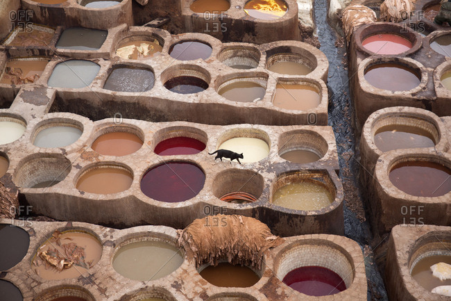 Vats of dye for coloring leathers, Fes, Morocco