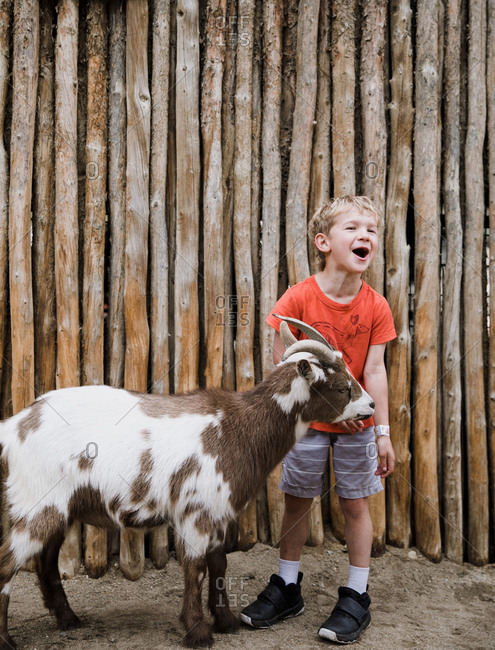 Young boy with a goat chewing on his arm