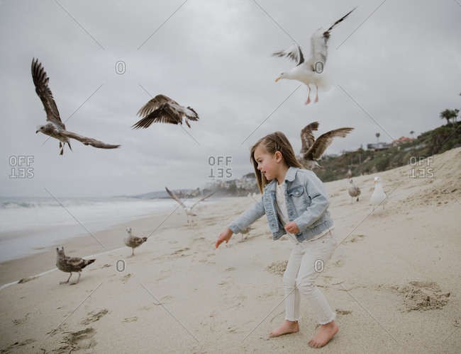 Young girl feeding seagulls at the beach