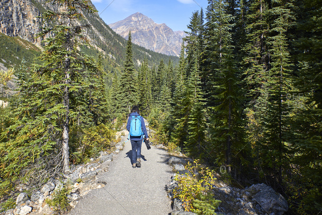 Canada, Alberta, Rocky Mountains, Canadian Rockies, Jasper National Pa