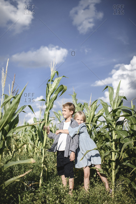 Boy and girl standing in a cornfield