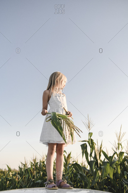 Blond girl standing at a cornfield