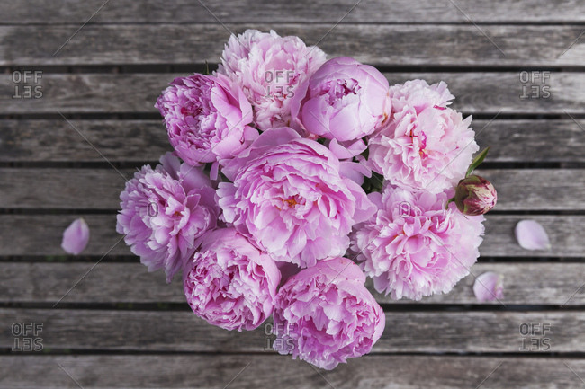 Pink peony bouquet on garden table