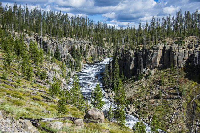 USA- Wyoming- Yellowstone National Park- Lewis river