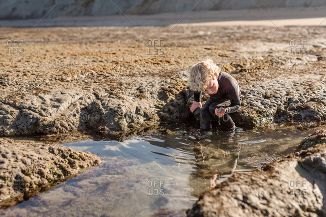 Child exploring tide pools with shell in hand