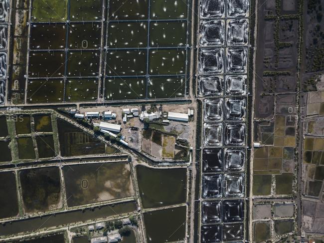 Aerial view of shrimp farm