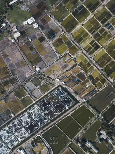 Aerial view of salt lakes and shrimp farm