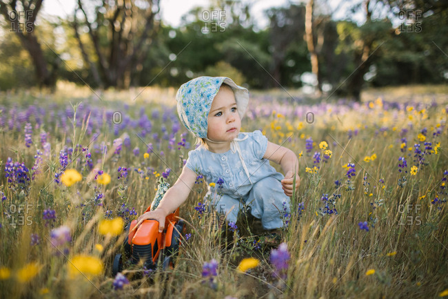 Toddler girl wearing a bonnet and playing with a toy tractor in a field of wildflowers