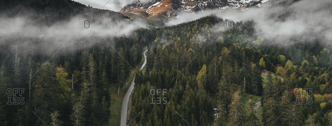 Panoramic view of foggy forest in the Pyrenees