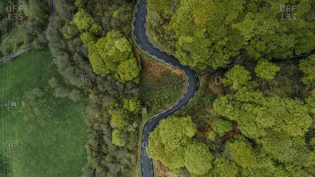 Winding road in a lush green forest in the Pyrenees