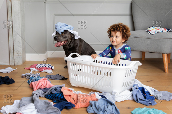 Mischievous boy and dog play with laundry