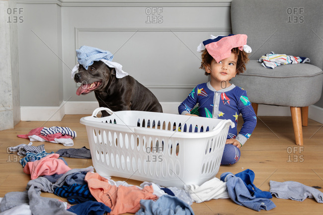 Boy and dog being silly with laundry