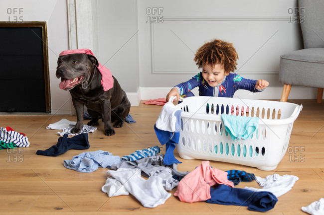 Boy and dog play with laundry