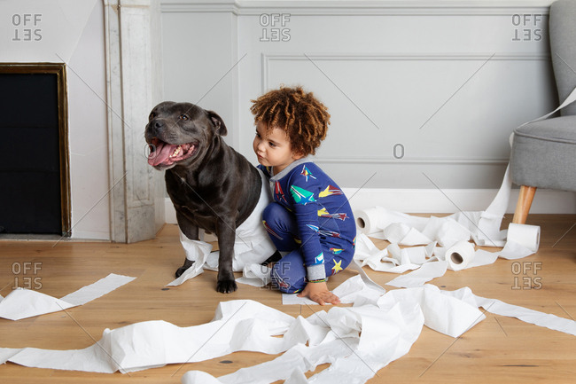 Boy and dog making mess with toilet paper rolls