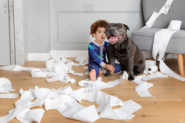 Mischievous boy and dog play with toilet paper rolls