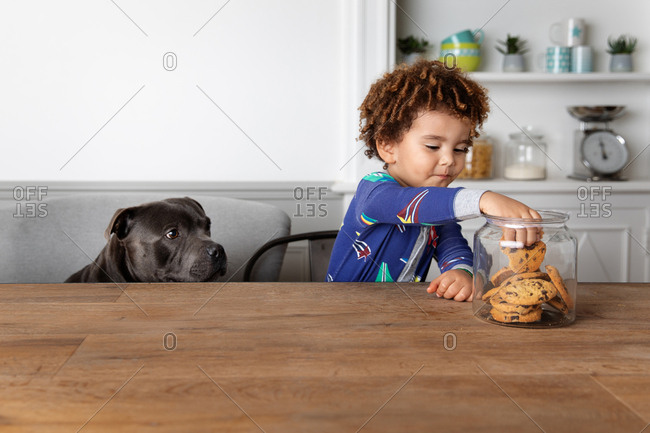 Boy and dog stealing cookies together