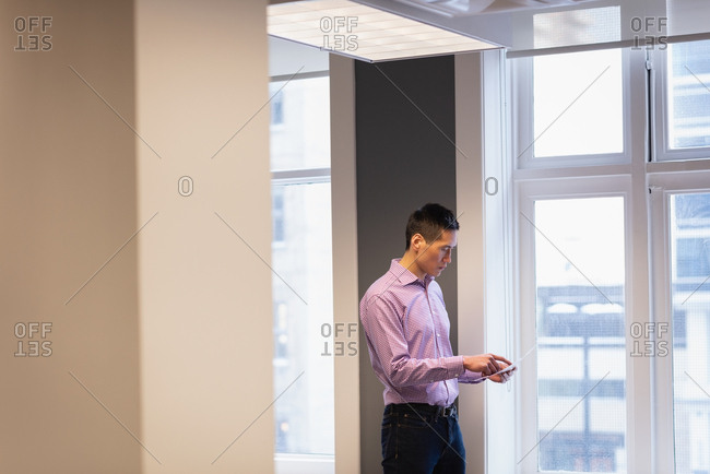 Side view of businessman reviewing photograph in the office