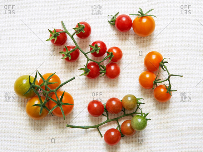 Overhead view of many varieties of vine ripe cherry tomatoes