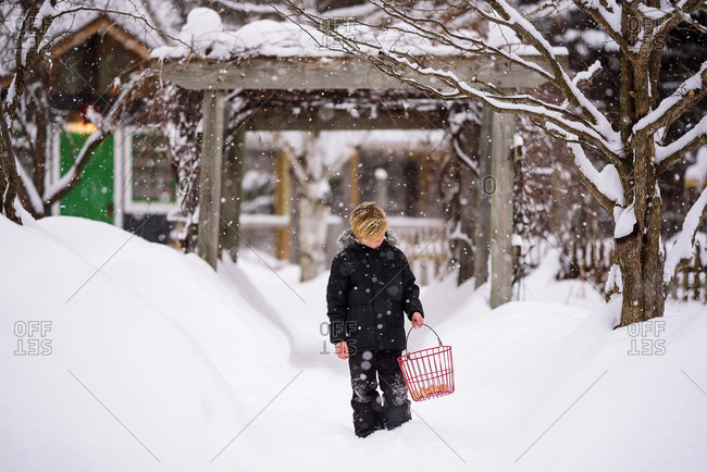 Portrait of a young boy in the snow in the country carrying a basket of eggs