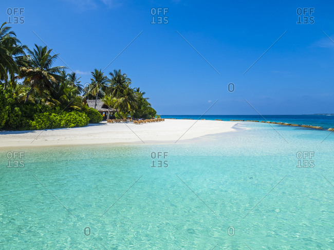 Maldives- Ross Atoll- beach bar and sandy beach with palms