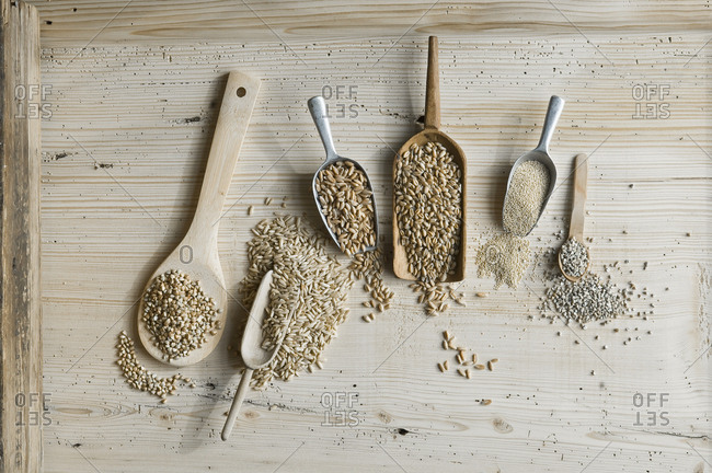 Organic wheat- rye shot- amaranth- spelt- buckwheat and oat on shovels and on wood- from above
