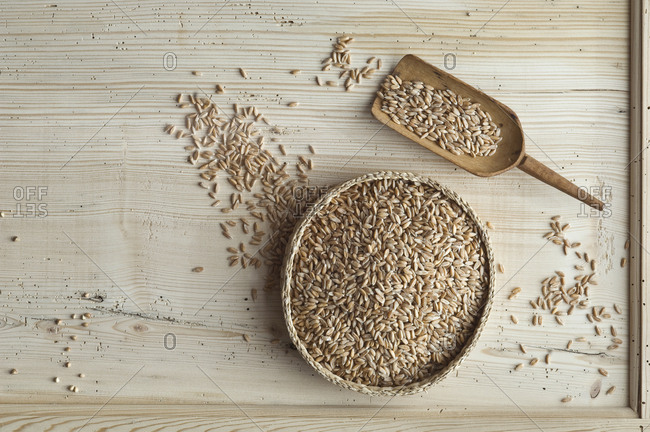 Organic spelt wheat in bowl- on wood- from above