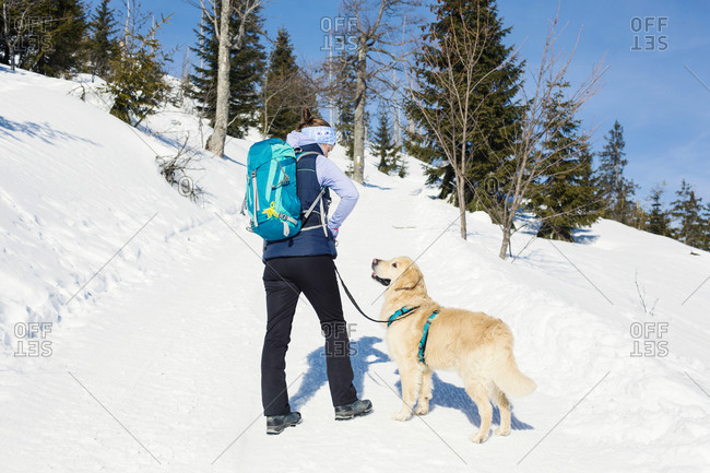 Germany- Bavarian Forest- Lusen- woman with dog hiking in winter