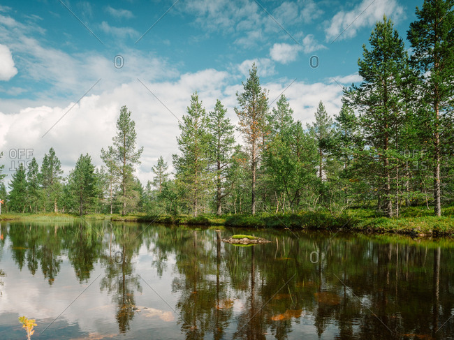 Amazing summer sunny landscape with river, meadow and forest in Finland