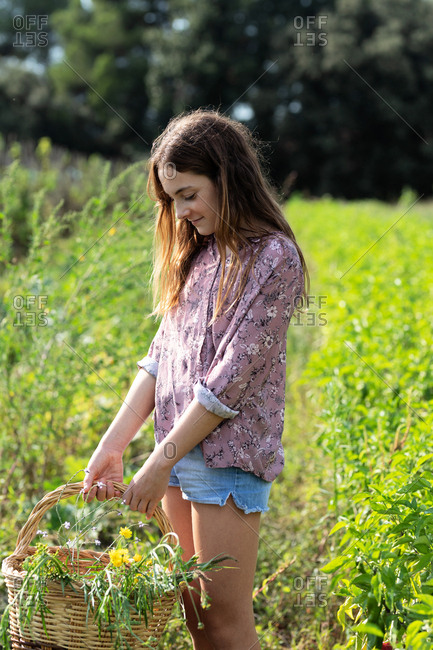 Side view of female teenager in casual outfit smiling and looking down while standing in field and holding basket with green herbs on sunny day in Catalonia, Spain
