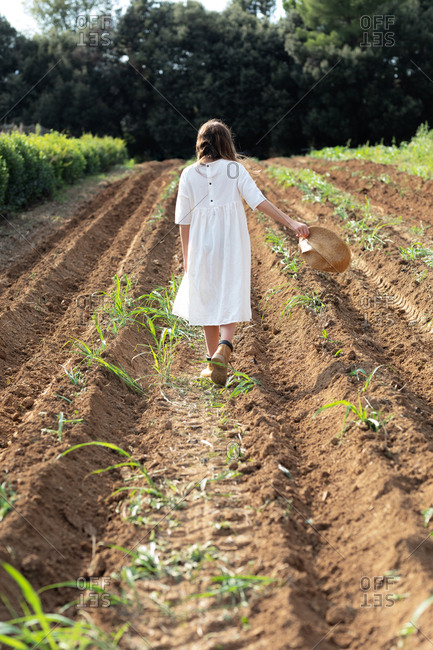 Back view of teen girl with walking near sprouts on agricultural field in orchard in Catalonia, Spain