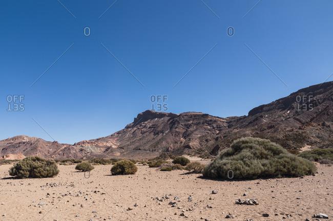 Mountain peak in wild desert area