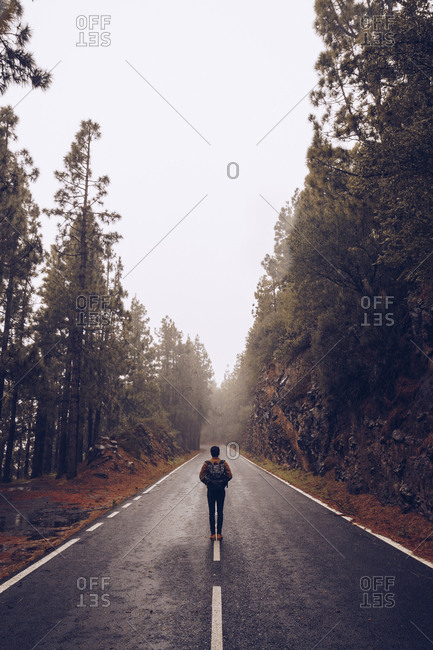 Traveler walking on empty road in woods