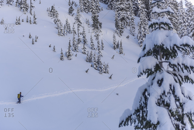 Woman following skin tracks in the backcountry