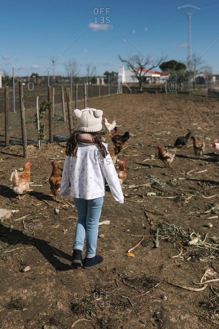 Girl run behind some chickens on a farm