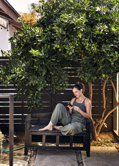 Mid adult woman using phone while sitting under lemon tree in backyard