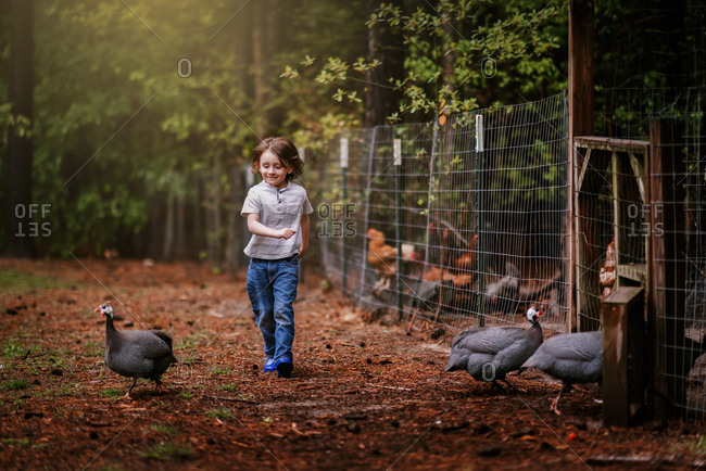 A Small Young Boy Chasing Chickens On A Farm