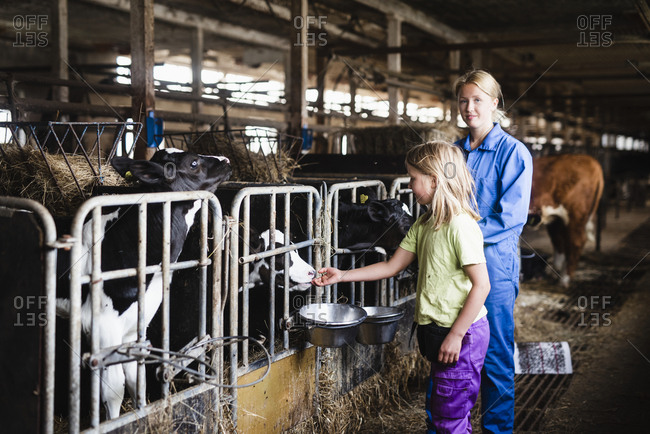 Woman and daughter in cowshed