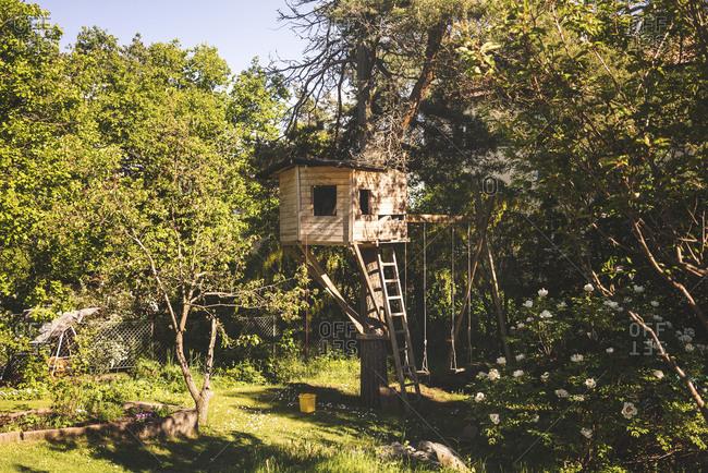 Tree house in a backyard