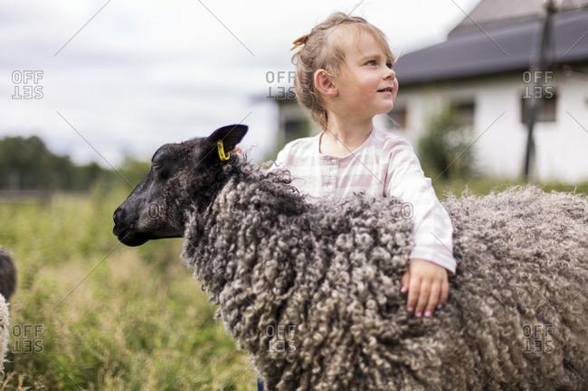 Girl hugging sheep