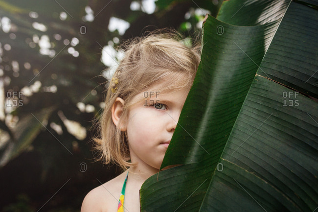 Girl hiding behind a large leaf