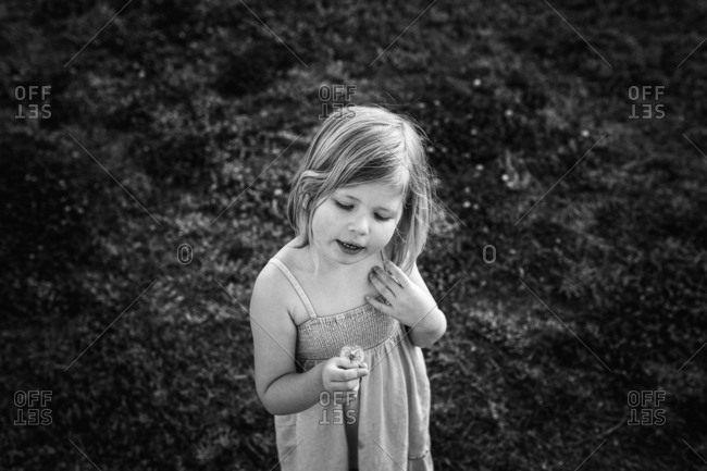 Girl with a dandelion in black and white
