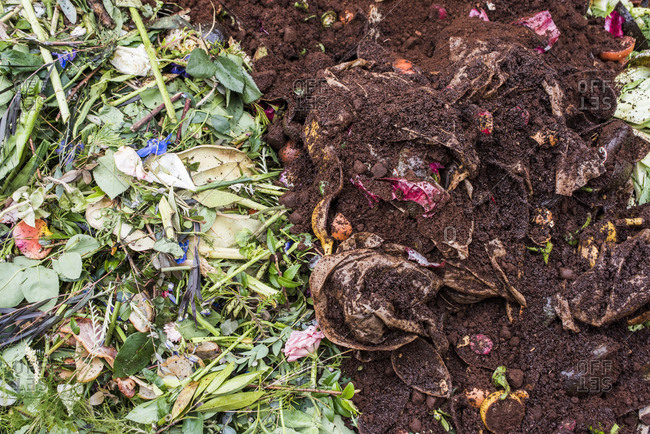 Composting flowers and other green matter together with kitchen waste