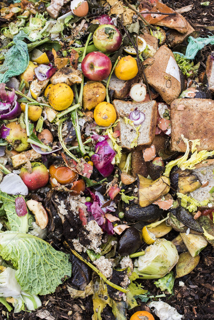 Kitchen waste added to a compost pile