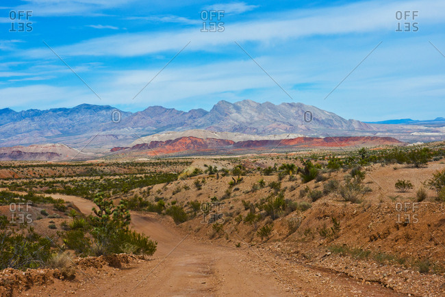 USA, Nevada, Mesquite. Gold Butte National Monument, Million Hills from Gold Butte Road