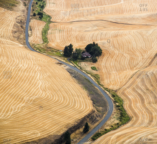 USA, Washington State, Palouse. Harvested fields.