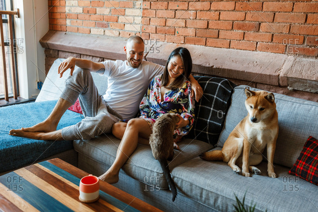 Couple seating on a sofa in their home with their cat and dog.